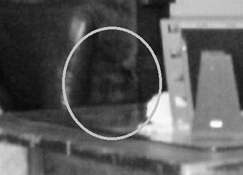 Real Ghost Photos